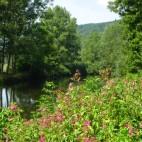 Das Werratal zwischen Creuzburg und Treffurt