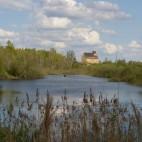 Die Wasserflächen sind beim Bau des Lindenauer Hafens entstanden