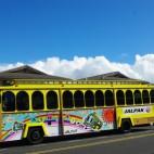 ... ist für die Touristen der Sightseeing-Bus. Sie fahren häufiger als die Stadtbusse