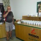 In der Teefabrik kann man sich durch die verschiedenen Sorten Rooibos kosten.