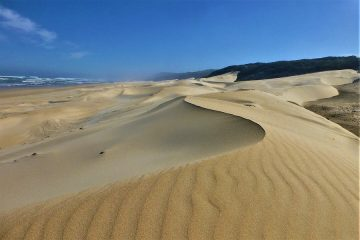 Port Elizabeth, Island Nature Reserve