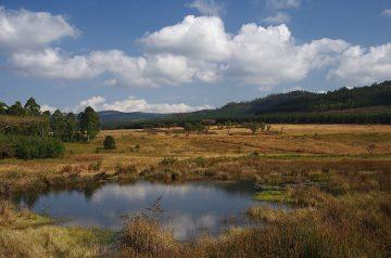Mlilwane-Nature Reserve