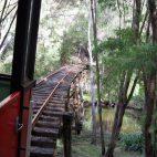 … und passiert tief im Wald abenteuerliche Flussüberquerungen.
