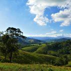 Saftig grüne Wiesen bestimmen das Bild im Barrington Nationalpark.