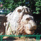 Von den legendären nordafrikanischen Berberlöwen ist nur noch ein Steindenkmal in Ifrane übrig.