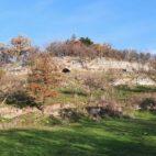 Der historische Weinberg bei Balgstädt